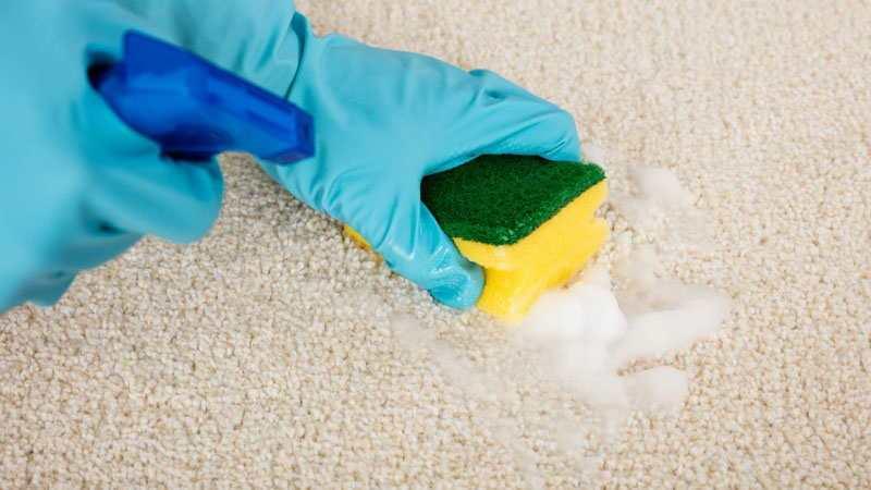 Как уксусом почистить ковры в домашних условиях 227